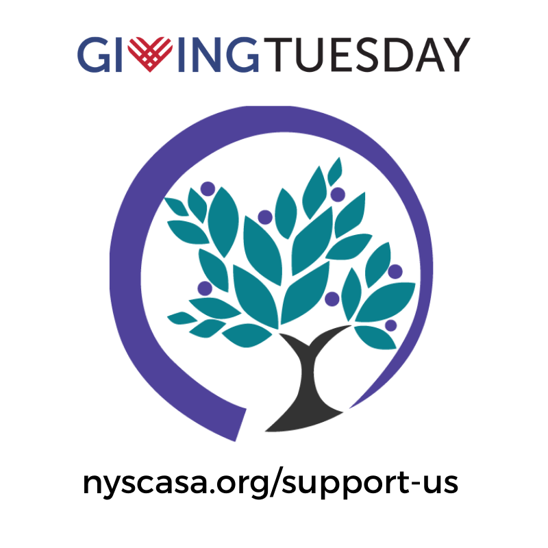 Giving Tuesday: nyscasa.org/support-us