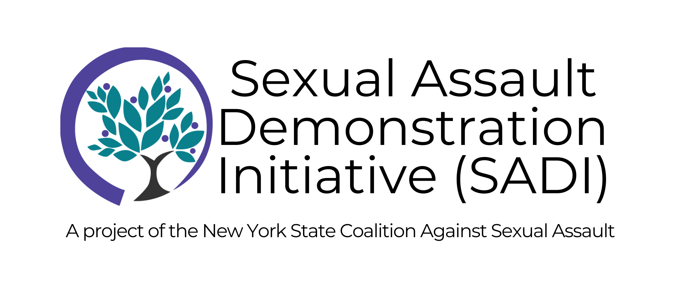 Announcing the NYSCASA Sexual Assault Demonstration Initiative – Cohort Period 1 Applications Due February 10, 2021